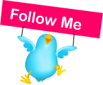 Follow Me roze