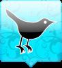 twitter vogel aqua blauw